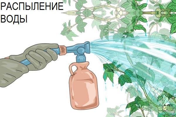вода от тли
